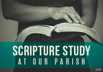 Disciples On the Journey Scripture Study